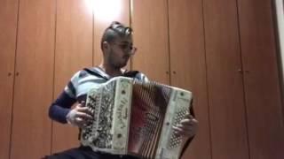 Ricardo Ferreira Ás da concertina  Músico ao maximo
