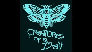Creatures of a Day - Your Words [Dawn]