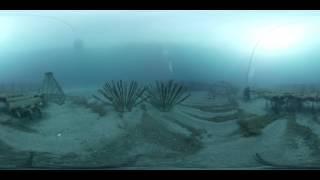 Remora_1 360° OCEANICA Prod