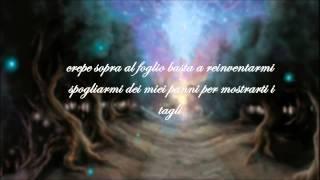 Mezzosangue -  Armonia & Caos TESTO