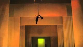David gymnast Aerial Strap