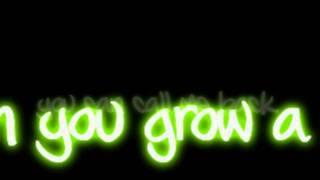 Ke$ha - Grow A Pear Lyrics Video