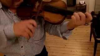 Geige Violin Franz Hell Elmshorn