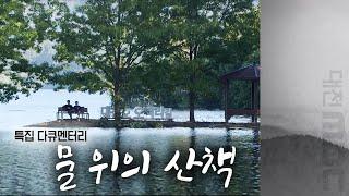 특집다큐멘터리 자연을 품은 도시 대전, 물 위의 산책 다시보기