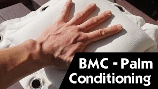 Iron Palm Training - Bone & Muscle Conditioning (B.M.C.)© - Martial Arts Explained