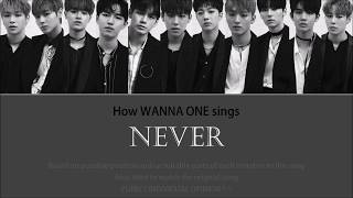 """How Wanna One Sings """"NEVER"""" + Line Distribution"""