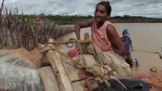 Trailer do Documentário: Escolhas Alimentares (FOOD CHOICES) Legendado
