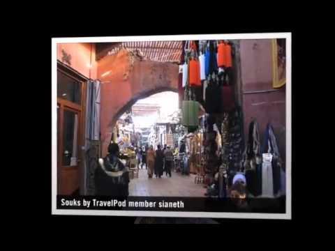 """Viva la Maroc"" Sianeth's photos around Marrakech, Morocco (france 24 monkeys maroc)"