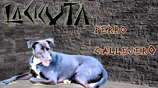 la cicuta - perro callejero