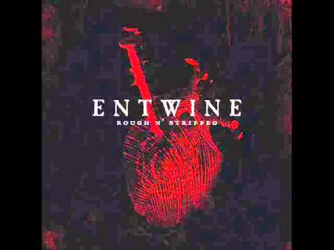 entwine-everything-for-you-acoustic-sweetsugarhoney
