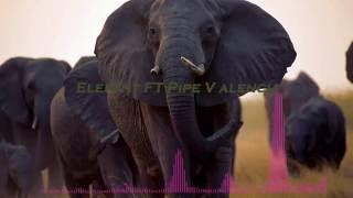 Elephant Big Room House 2016 ►EDM & Electro House ►Vol.1