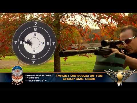Video: Gamo Whisper Fusion IGT air rifle - AGR Episode #106 | Pyramyd Air