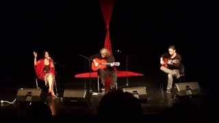 Baldi Olier - gypsy show    באלדי אולייר מתוך מופע צועני