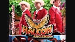 Halcon huasteco - PARA TI MAMA