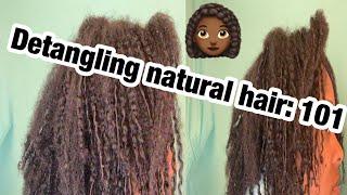 Detangling natural hair 101| Type 3c/4a hair