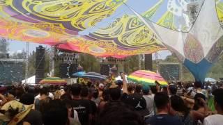 Ace Ventura HOMmega Fest