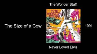 The Wonder Stuff - The Size of a Cow - Never Loved Elvis [1991]
