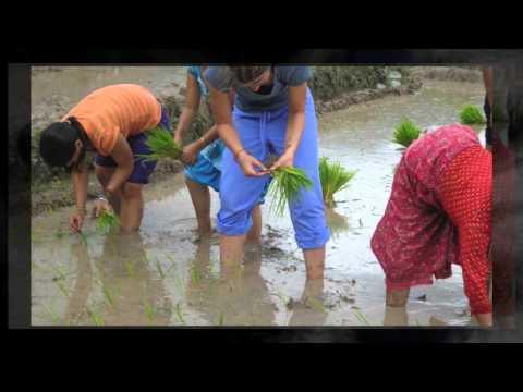 Rural Nepal Experience