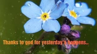 Free Download Good Morning Wishes HD Wallpapers, Quotes, Images,good morning shayari,rose good morni