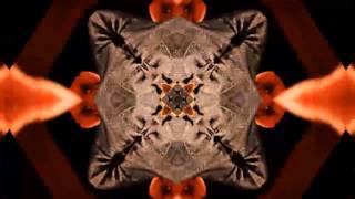Arnaldo Baptista - Clip relançamento do álbum Singin' Alone (1982)