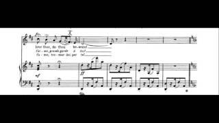 """Habanera from Carmen (""""L'amour est un oiseau rebelle"""") - Karaoke instrumental"""
