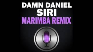 Damn Daniel Siri Marimba Remix