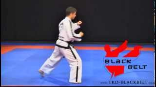 DO-SAN TUL by Jaroslaw Suska - www.tkd-blackbelt.com