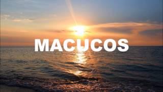 Macucos - Tá Pra Nascer