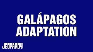 Galápagos Adaptation | JEOPARDY!