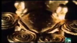 Ao Extremo - Os 10 Mais Venenosos - 01- Planet Animal - 4 / 4