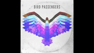 Bird Passengers - Fly Away