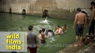 Ancient Nizamuddin Baoli now a swimming pool for local lads