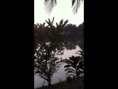 Pond by the experience bangladesh office