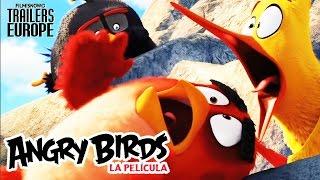 ANGRY BIRDS LA PELÍCULA - Momentos Más Divertidos