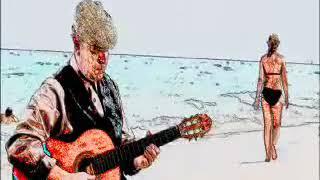 SPANISH GUITAR INSTRUMENTAL with  BOSSA NOVA PERCUSSION-