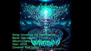 Vulvodynia Unveiling the Abomination (cover) (Audio version)