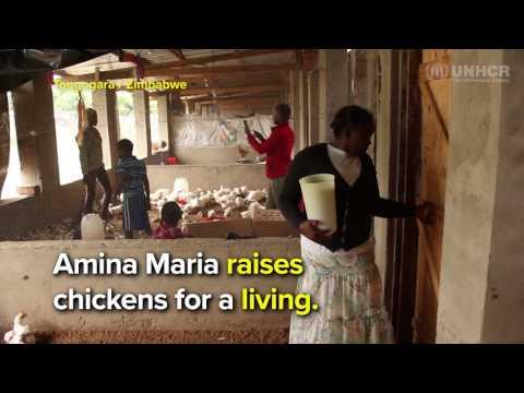 Zimbabwe: Farming Project Gives Refugees a Fresh Start