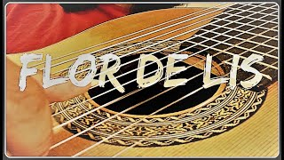 Flor de Lis (Djavan), instrumental cover, violão de 11 cordas (11-string guitar)
