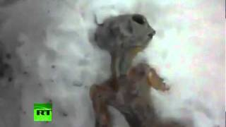 Amazing Fake? Video of 'Dead Alien' after Siberia crash-landing