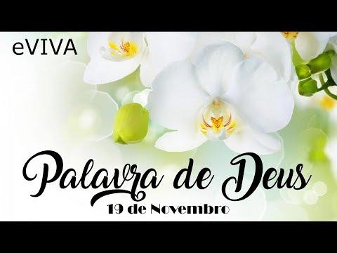 PALAVRA DE DEUS PARA HOJE 19 DE NOVEMBRO eVIVA MENSAGEM MOTIVACIONAL PARA REFLEXÃO DE VIDA