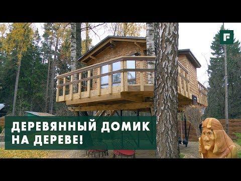 Домик на дереве с детской площадкой: особенности конструктива // FORUMHOUSE