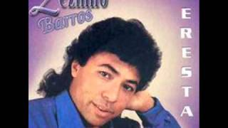 ZEZINHO BARROS-CATIVO DA SOLIDÃO- DJ RONALDO FARUK.