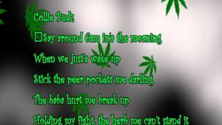 Snoop Lion - Smoke The Weed ft  Collie Buddz (Lyrics)