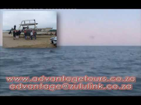 Advantage Tours, whale watching south africa