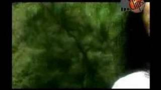 Lacyn M - Gel Gyzma