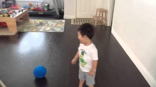 Draco kick ball