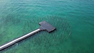 Rumors from the sea, Thailand Biennale