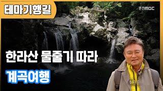 한라산 물줄기 따라 계곡여행 다시보기