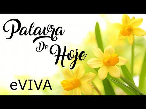 PALAVRA DE HOJE 08 DE MAIO 2020 eVIVA MENSAGEM MOTIVACIONAL PARA REFLEXÃO 2 SAMUEL 22 31 BOM DIA!