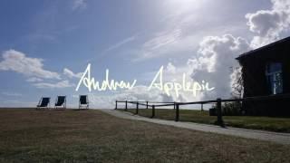 Andrew Applepie - I Need A Break